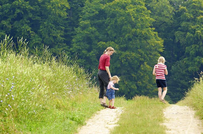 Familienwanderung im ErlebnisWald Trappenkamp