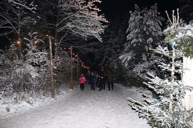 Familienwanderung durch den Winterwald Familienwanderung durch den Winterwald