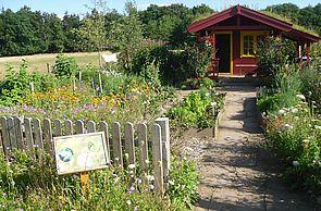 Schmetterlingsgarten im ErlebnisWald Trappenkamp